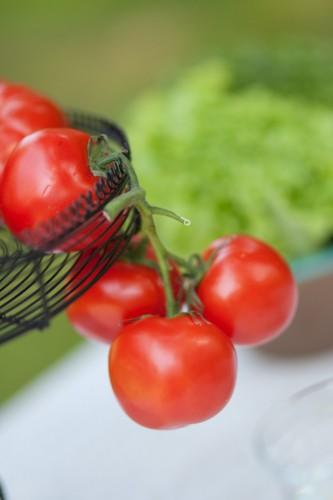 Pomidorai_Tomas Virsilas