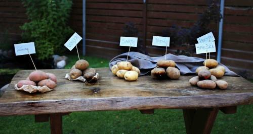 Beatos virtuvė - bulvių veislės, cepelinai