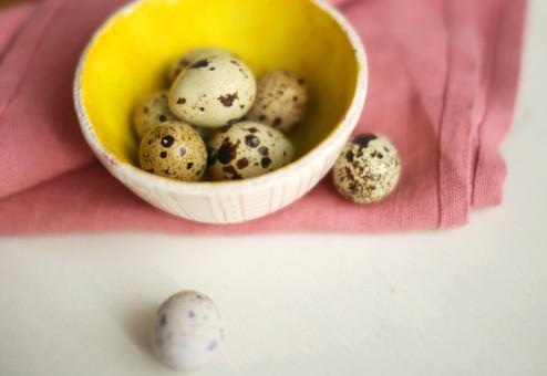 Putpelių kiaušiniai - maži, bet naudingi